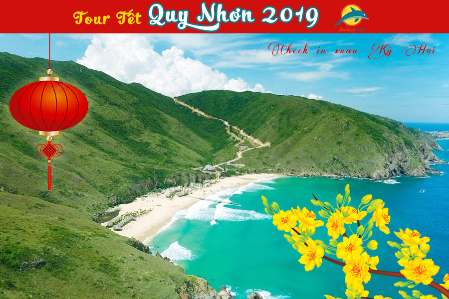 tour-quy-nhon-tet-2019-sea-king-tourist-1